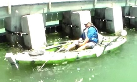 552 pound grouper fish caught by some guy in a kayak (PHOTO)