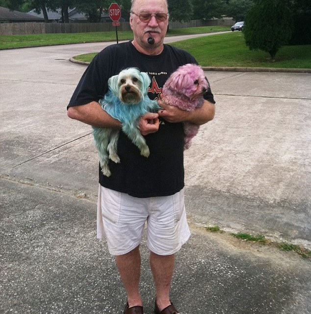 Texas Man James Rogers Dies in Hot Car With dog, Could No Unlock Corvette Doors (PHOTO)