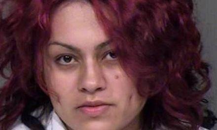 Mireya Alejandra Lopez: Arizona mom drowns twins police say