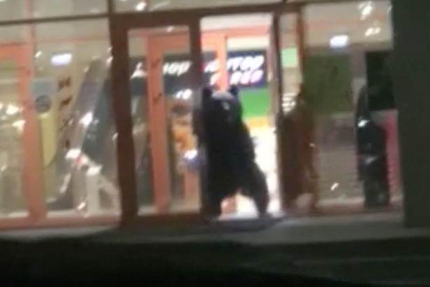 Bear Russian mall 3