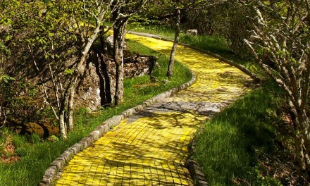 Photos Of Run Down 'Land of Oz' Theme Park In North Are Amazing