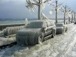 Buffalo car in ice 3