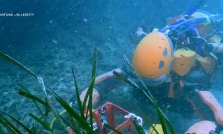 Mermaid robot explores shipwreck:  VIDEO