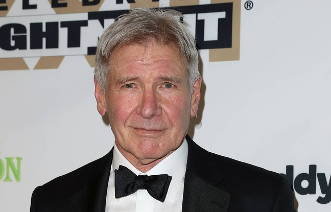 """Harrison Ford  says """"I'm a schmuck"""" after crashing his plane"""