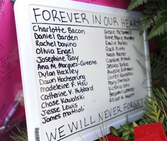 sandy hook victims 1