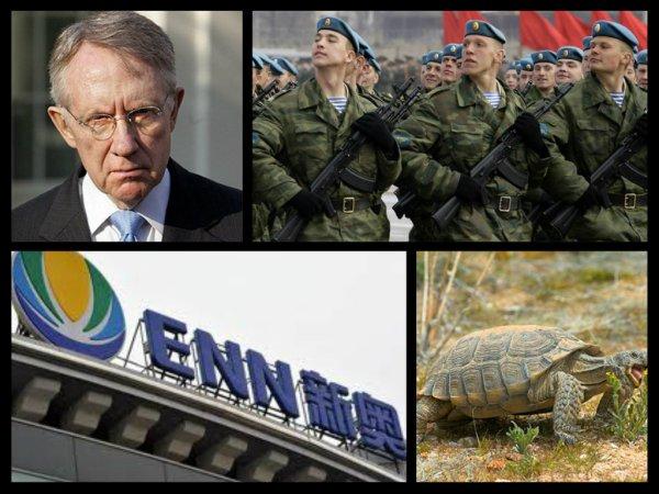 harry reid russian troops chinese businessmen desert turtles