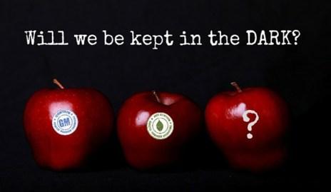 apples-GMO-DARK-Act-620x360-1