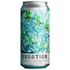 Duration Turtles All The Way Down 5,5% 44cl