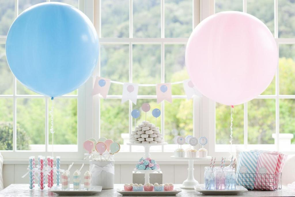 decoração minimalista e simples para chá revelação nas cores rosa colarinho e azul. Ao fundo, uma janela enorme com mata atrás.