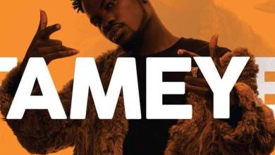 Photo of Fameye x Sarkodie – Biibiba Challenge (Freestyle)