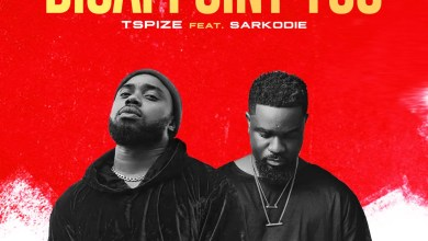 Photo of TSpize ft. Sarkodie – Disappoint You