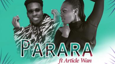 Photo of Pam Official ft. Article Wan – Parara (Prod by Article Wan)