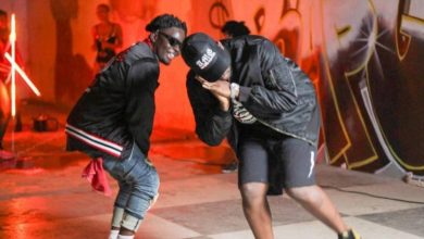 Photo of Agbeshie ft. Medikal – Wrowroho (Official Video)