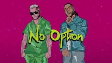 No Option - DJ Snake ft Burna Boy - No Option