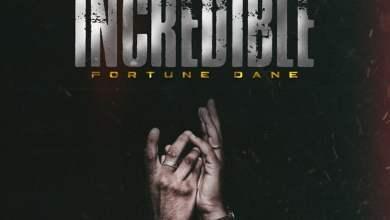 INCREDIBLE - Fortune Dane - Incredible