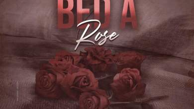 Photo of Demarco – Bed a Rose (Firm Riddim)