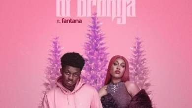 Photo of Deon Boakye feat. Fantana – Di Bronya (Remix)