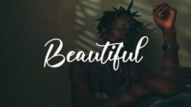 Photo of Fameye – Beautiful (Official Video)