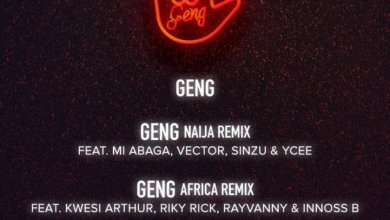 Photo of Mayorkun ft. Kwesi Arthur, Riky Rick, Rayvanny & Innoss B – Geng (Africa Remix)