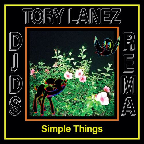 simple things cover art 500x500 - DJDS - Simple Things ft. Tory Lanez & Rema