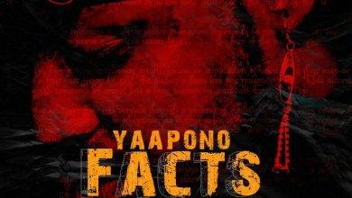 yaa pono diss song - Yaa Pono - Facts
