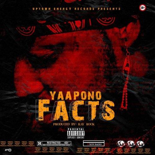 yaa pono diss song 500x500 - Yaa Pono - Facts