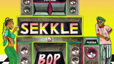 Mr Eazi ft Dre Skull Popcaan Sekkle Bop www dcleakers com  mp3 image - Mr Eazi - Sekkle & Bop ft. Dre Skull & Popcaan