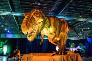 Discover The Dinosaurs UNLEASHED - T-Rex