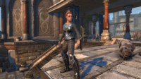 ddmsrealm-neverwinter-guardian-fight-stance