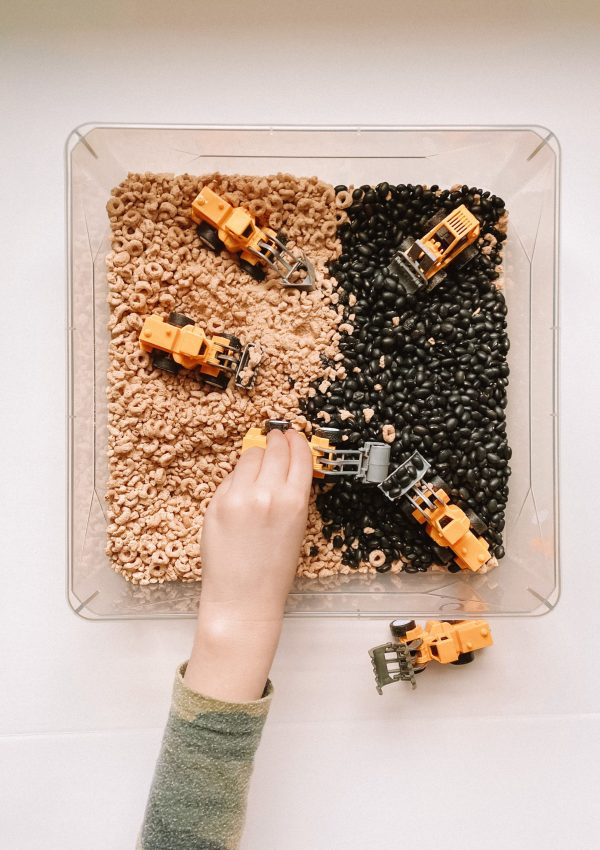 Four Sensory Bin Ideas Your Toddler Will Love