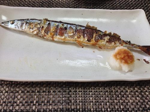 初物秋刀魚