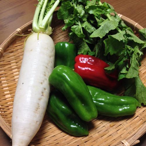 小山口県の新鮮野菜