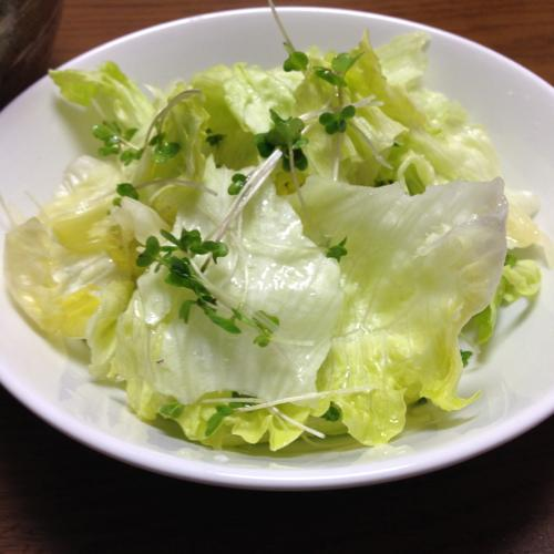 th_グリーンサラダ