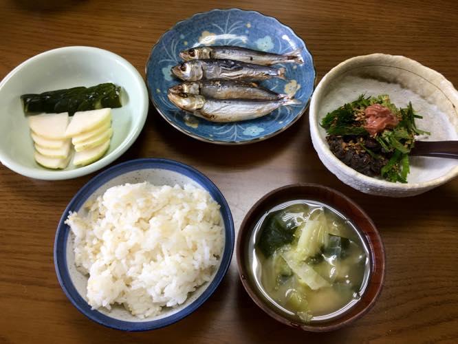 th_マイワシ朝食