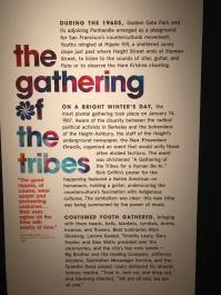 Photo by Marc Margolis - Summer of Love at de Young (12)
