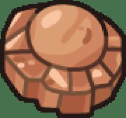 Skull Fossil