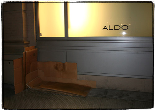 Hobo cardboard bed