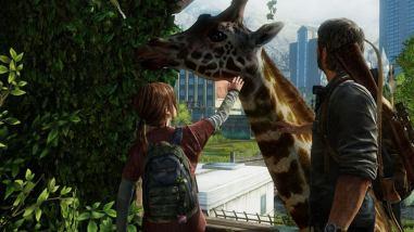 Ellie and the Giraffe