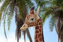 Random Giraffe next to...