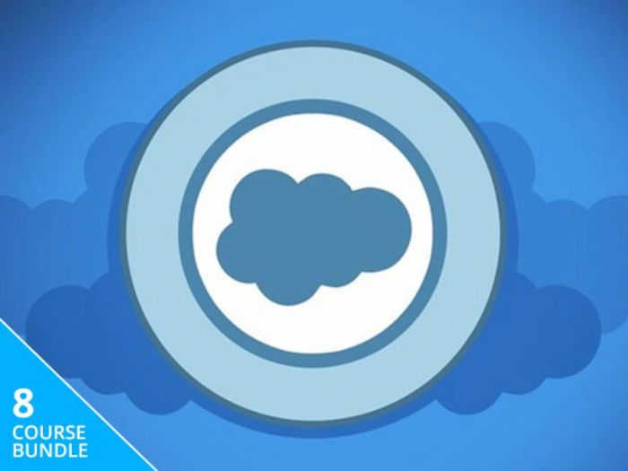 The Salesforce Trailblazer Certification Training Bundle | StackSocial