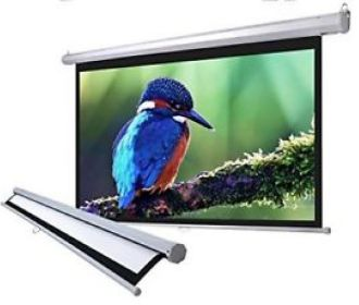 Buy Manual Pull-Down 100″ Widescreen Projection Screen for $39.99
