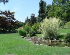 Giardino botanico - Parco del Valentino