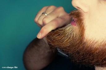 10 - de baard van emiel