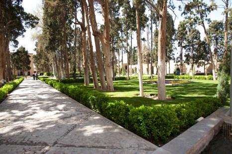 花園內到處都是樹木