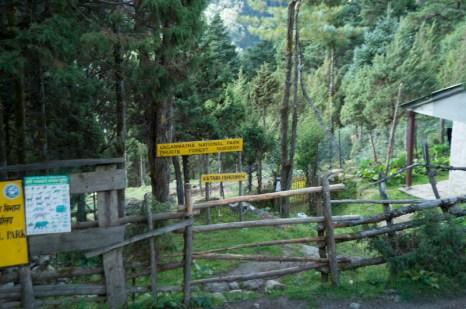 Phurte Forest Nursery