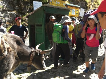 The check post is full of hikers in return to Lukla
