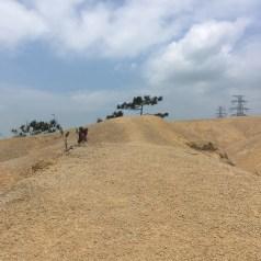 滿是黃沙的青山腹地