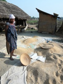 A Tharu lady and her harvest of grains
