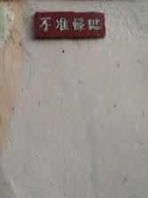 坪洲 photowalk