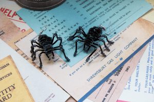 Black Spider Earrings by WW2.5